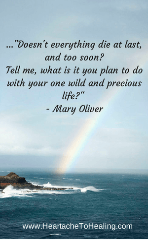 Mary Oliver Poem on Life